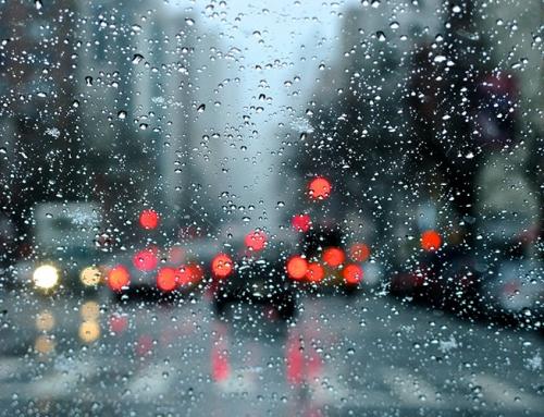 Rain – Photography